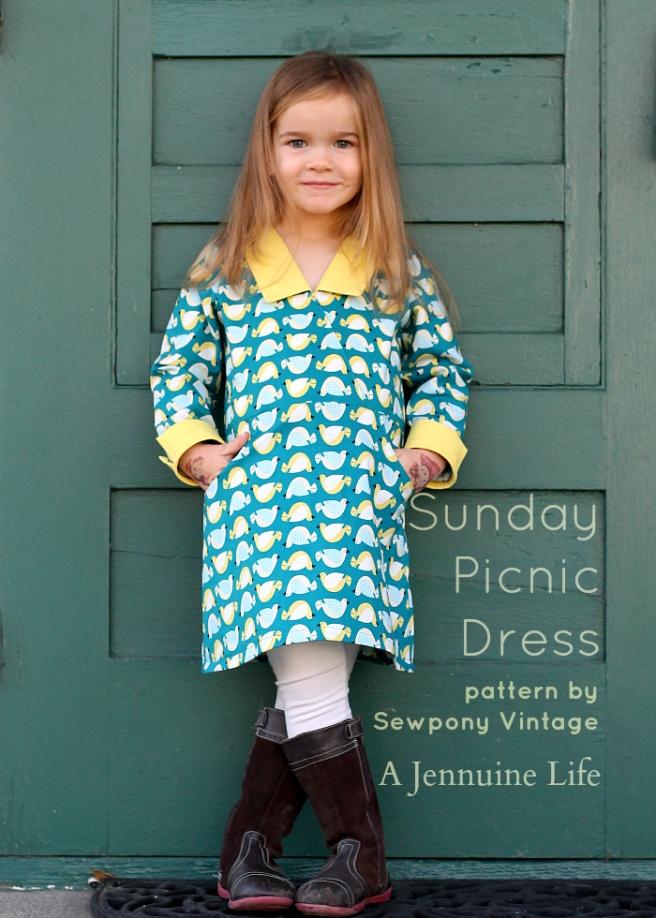 Sunday Picnic Dress Title